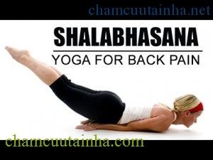 dong-tac-yoga-giam-dau-lung-_Shalabhasana