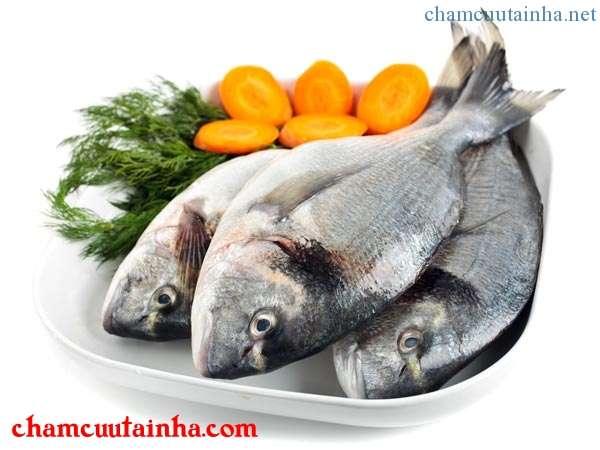 Cá giàu omega-3
