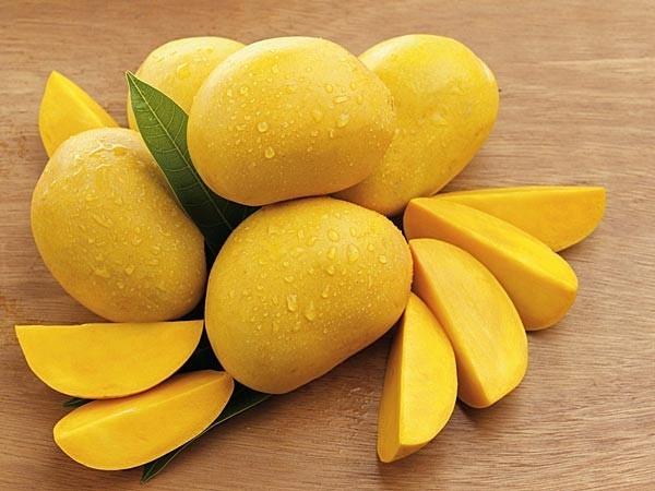 Xoài là trái cây phổ biến của mùa hè, rất giàu dinh dưỡng, tốt cho cơ thể. Tuy nhiên, ăn quá nhiều xoài có thể gây nóng trong, nổi mụn, đặc biệt ở trẻ em và thanh thiếu niên.