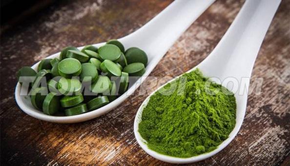 Tảo Spirulina là thực phẩm lý tưởng cho người gầy tăng cân chắc khỏe, an toàn