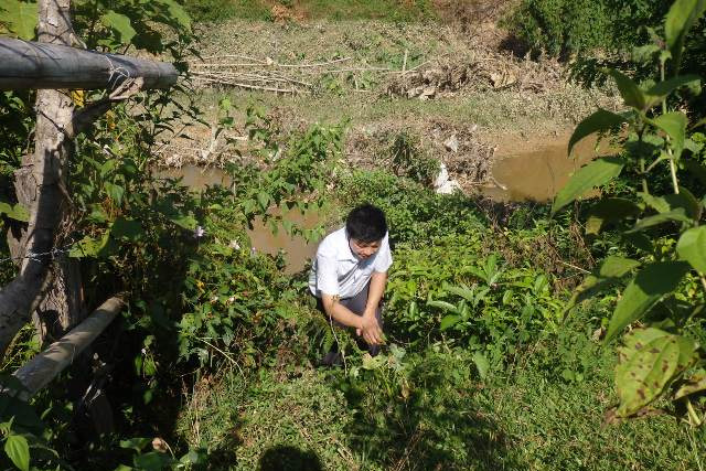 Ông Lưu với những thứ lá có sẵn xung quanh nhà đã chữa trị khỏi bệnh cho trên 100 người