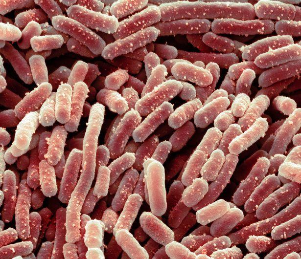 Nếu bạn vừa tẩy lông trước khi dùng bông tắm, tất cả những thứ dơ bẩn đó nhanh chóng xâm nhập vào các vết thương hở li ti, dẫn tới nhiễm trùng da. Đỡ hơn thì bạn chỉ bị nổi ít mụn lưng, mẩn đỏ hay ngứa ngáy.